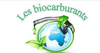 biocarburant.JPG